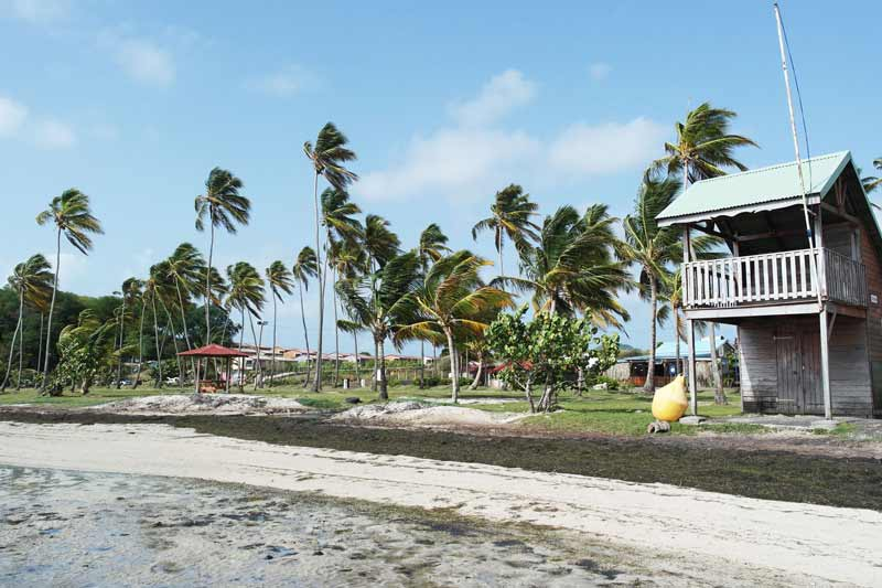 plage-pointe-faula-kitesurf-location-vacances-martinique-voyage-kitecamp-martinique