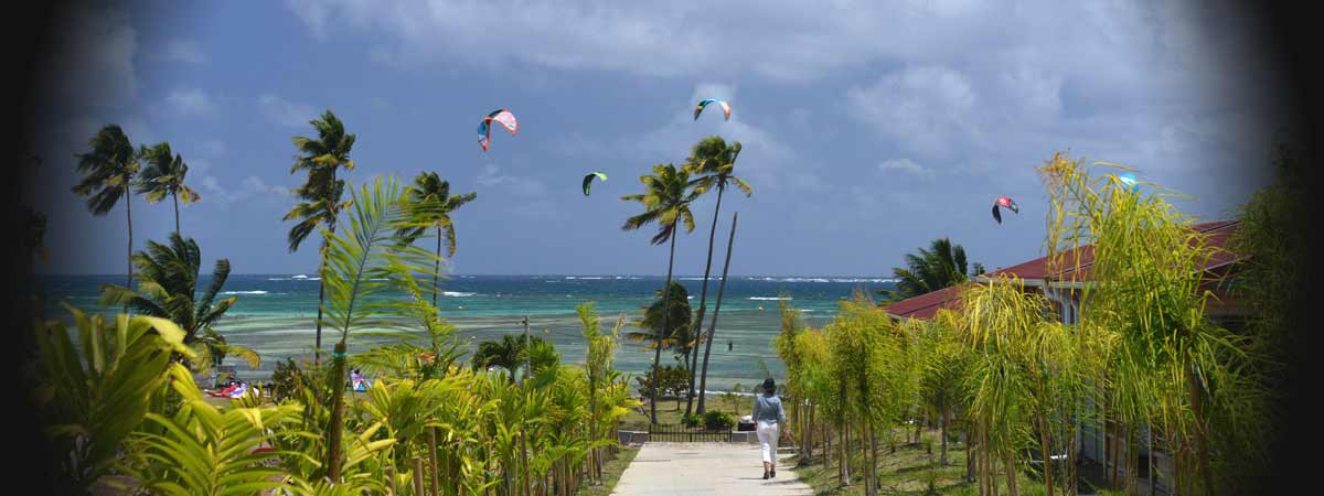 Vue vers la mer pour les bungalows du kitecamp Martinique