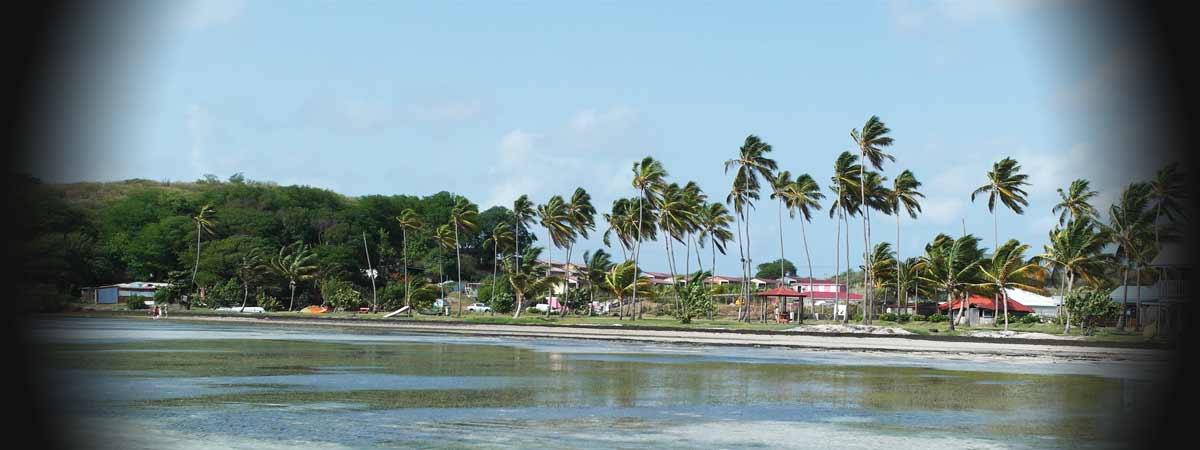 Location de bungalow à quelques mètres du spot de kite de la Pointe Faula Vauclin