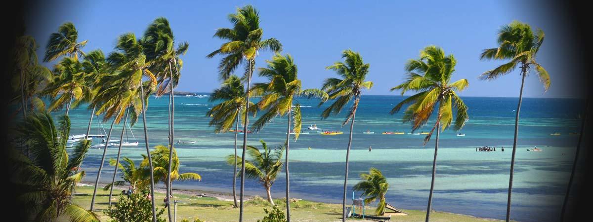 spot de kitesurf au Kitecamp Martinique